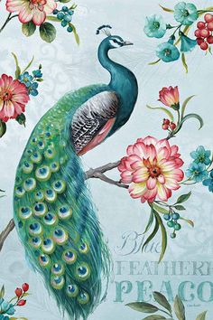 Blue Feathered Peacock I Lisa Audit Bird Animal Floral Flower Print Poster