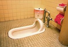 Japanese typical toilet