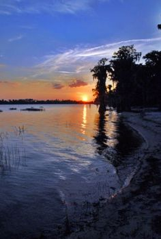 Wondering where in the world Clermont FL is? Maybe distance, directions, maps and images? We have it all including homes and real estate in Clermont Florida. Visit Florida, Florida Living, Old Florida, Florida Vacation, Miami Florida, Florida Beaches, South Florida, Florida Sunshine, Sunshine State