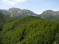Paisajes de España. Principado de Asturias/ Landscapes of Spain. Principality of Asturias.