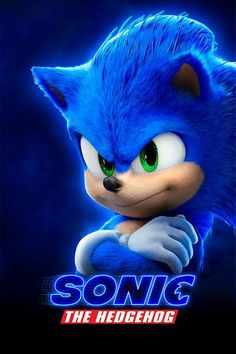 Sonic the Hedgehog - Modeling, Alin Bolcas Sonic The Hedgehog Costume, Hedgehog Movie, Hedgehog Art, Sonic Hedgehog, Arte Do Hulk, Hedgehog Bedding, Sonic Birthday Parties, Sonic The Movie, Sonic Dash