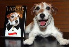 Uggie, el perro de 'The Artist' se pasa a escritor. / Uggie, the dog from 'The Artist' is passed to writer.