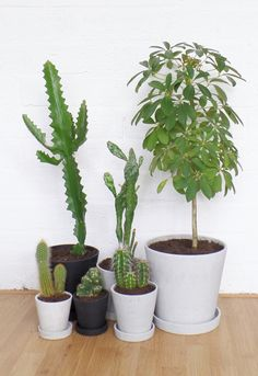 Via Nordic Days | HAY Flowerpot series | Cactus