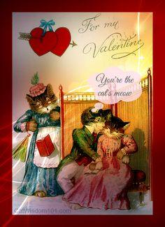 Cat Wisdom 101   Purr Power Cat Valentines