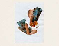 Collage By Tania Bernal