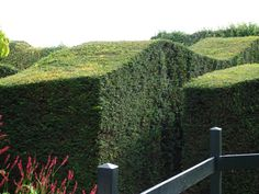 NL - Hummelo Garden Piet Oudolf