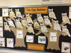The Owl Babies Display, classroom Display, animal, owls, book, nocturnal, wise owl, night, hunt, Early Years (EYFS), KS1 & KS2 Primary Teaching Resources