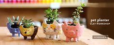 Pet Planters