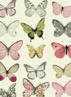 Immagine di butterfly, background, and wallpaper