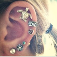 Cute earrings...And another turtle!
