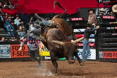PBR (@PBR) | Twitter Professional Bull Riders, 8 Seconds, Horses, Twitter, Animals, Animales, Animaux, Animal, Animais