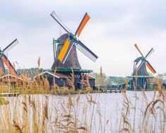 Zaanse Schans bezoeken: alles wat je moet weten voor jouw bezoek Amsterdam, Sailing Ships, Fair Grounds, Boat, Country, World, Travel, Everything, Dinghy