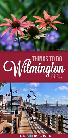 6 Best Things to Do in Wilmington, N.C.