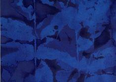 The Nature of Blue Cyanotypes Sun Prints, Alternative Photography, Cyanotype, Ceramic Artists, Blues, Art Gallery, Strong, Silk, Inspired