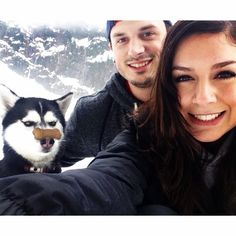 Jealous Husky // funny pictures - funny photos - funny images - funny pics - funny quotes - #lol #humor #funnypictures