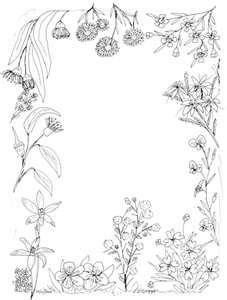 Page Border Designs   beautiful; patterns; borders; background ...