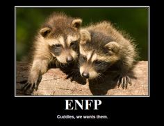 Cuddles I want them. ENFP. This explains why people say I'm a touchy person when really I only like to cuddle on my own terms.