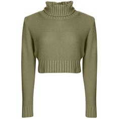 Nicole Turtle Neck Crop Jumper ($19) ❤ liked on Polyvore featuring tops, sweaters, crop top, turtleneck sweater, cropped sweater, cropped turtleneck sweater, jumpers sweaters and brown sweater