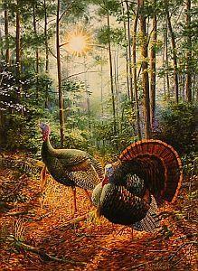 """Hitting the Trail"" - Wild Turkeys ~ by Wildlife Artist Randy McGovern"