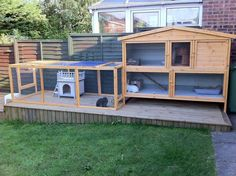 Rabbit welfare has changed dramatically over the past few years and our main aim is to ensure the public are aware of rabbits needs. Rabbit Cages Outdoor, Rabbit Hutch Indoor, Rabbit Hutch Plans, Large Rabbit Hutch, Rabbit Hutches, Rabbit Enclosure, Reptile Enclosure, Rabbit Habitat, Guinea Pig House