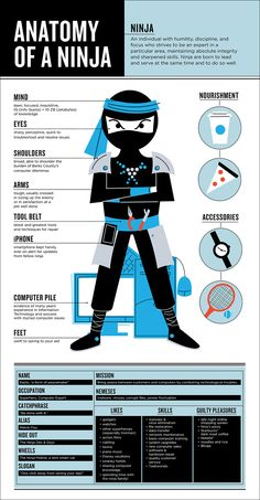 Anatomy of a Ninja