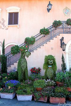 topiary Lady and theTtramp