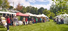 What to expect in 2015: A scene from Danforth East Arts Fair 2014