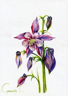 Flowers, blue, purple, Watercolor Original Painting from the Artist #Realism