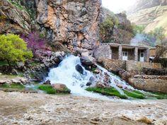 سرووشتی جوانی کوردستان طبیعت زیبای کردستان  کردستان، سرواباد، روستای بلبر  #ارغوان