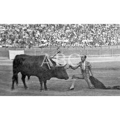 SÁNCHEZ MEJÍA ADORNÁNDOSE DESPUÉS DE LA FAENA REALIZADA A SU PRIMER TORO en Murcia:06/09/1925 Descarga y compra fotografías históricas en | abcfoto.abc.es