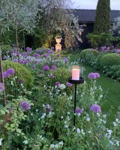 Still enjoying the beautiful 'Alliums Purple Sensation' and the white 'Geraniums Phaeum Alba'🌿 The light stands are from Cottage Garden Design, Diy Garden, Spring Garden, Shade Garden, Dream Garden, Small Cottage Garden Ideas, Formal Garden Design, English Garden Design, Garden Nook