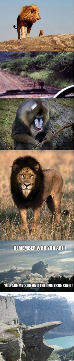 The Lion King in real life, timon, pumba, simbar, pride rock, photos, photographs