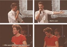 Awee Niall starts blushing!!! But I totally agree Niall is such a cutie!!!