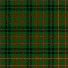 Tartan image: Buchanan Hunting (Scott Adie). My family's clan. Click on this image to see a more detailed version.