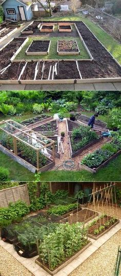 These vegetable garden designs require a little more space. Their layout allows you to grow different foods in different areas, and their path let you easy to pick and maintain your food