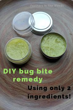 Only 2 ingredients are needed to make this bug bite salve to take the itch and sting out of bites. Only 2 ingredients are needed to make this bug bite salve to take the itch and sting out of bites. Ant Bites, Insect Bites, Healing Herbs, Natural Healing, Natural Herbs, Natural Health Remedies, Herbal Remedies, Bug Bite Relief, Homemade Body Care