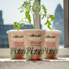 Grow Your Own Pizza at Firebox.com
