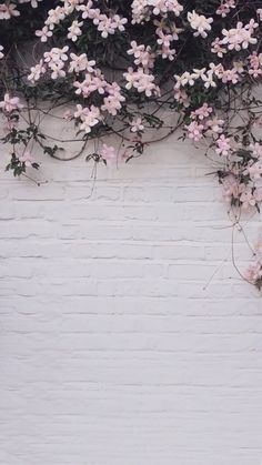 42 Classy Unique Wall Background You Must Have Well-decorated walls . - 42 Classy Unique Wall Background You Must Have Well-decorated walls are one of the most - Flower Phone Wallpaper, Iphone Background Wallpaper, Aesthetic Iphone Wallpaper, Aesthetic Wallpapers, Flowers Background Iphone, Flower Lockscreen, Iphone Background Vintage, Spring Flowers Wallpaper, Facebook Background