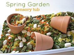 Sensory bins are such great teaching tools and for this one I wanted it not just to look like a spring garden but to feel like one too. So we stuck with earthy natural colors, all natural contents ( minus the tongs and pots) and talked about how we can ( and will) plant some of the beans from the bin and track it's growth.