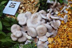 Mushrooms Borough Market London  | The LDN Diaries