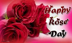 happy rose day, rose day 2017 quote, happy valentine day