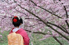 Geisha excursion in Japan with General Tours. Picture courtesy of General Tours.