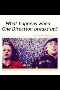 One direction meets the notebook ;)