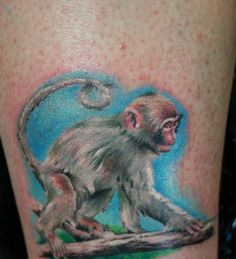 images of monkey tattoos | Tattoos.so » Realistic Monkey Cub on Tree Branch Tattoo