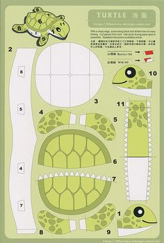 Turtle - Cut Out Postcard | Flickr - Photo Sharing!