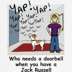 The big rule in my house, no barking inside, goes out the window when that doorbell chimes.