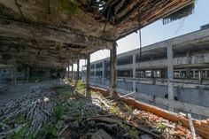 The old Packard plant in Detroit MI [OC] [6000X4000]