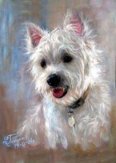 art and portraits of westies West Highland Terrier, Pastel Portraits, Dog Portraits, Pastel Art, Westies, Westie Dog, Art Plastique, Animal Paintings, Dog Art