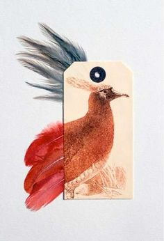 Artistic Avian Campaigns - 'Ghosts of Gone Birds' Project Raises Awareness About These Animals (GALLERY)