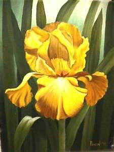 Kathy Payson Oil Paintings